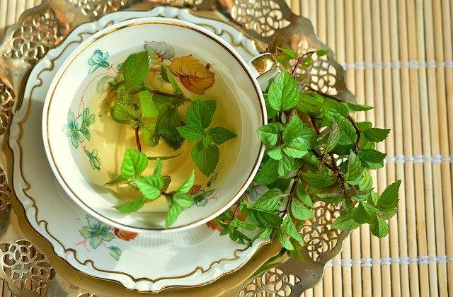 peppermint tea weight loss